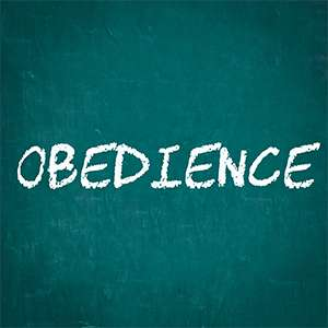 obedience-article-pic